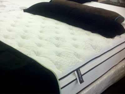 Is There A Bed Bug Proof Mattress