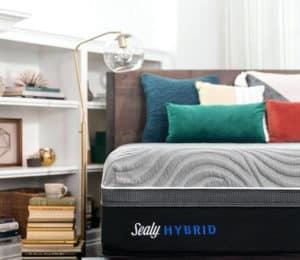 Sealy Hybrid Corner Logo View
