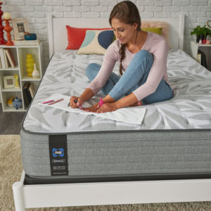 sealy silver pine plush mattress