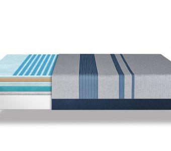 Blue Max 1000 Plush
