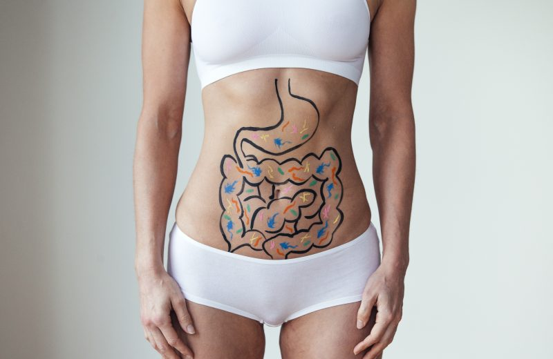 woman wearing white sports bra and underwear with diagram of metabolism process drawn on her stomach