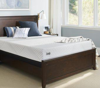 Sealy Conform Essentials Treat Cushion Firm